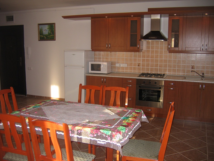 Balaton accommodation kitchen 2
